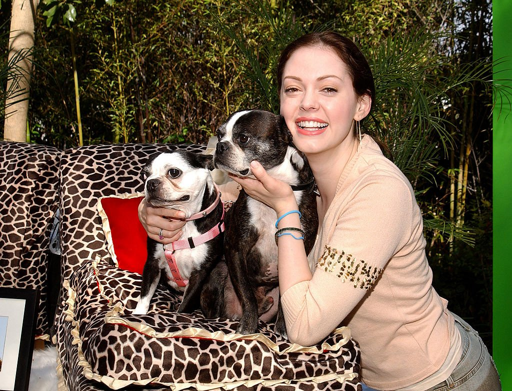 Image Credit: Getty Images / Rose McGowan and her dogs at La Petite Maison.