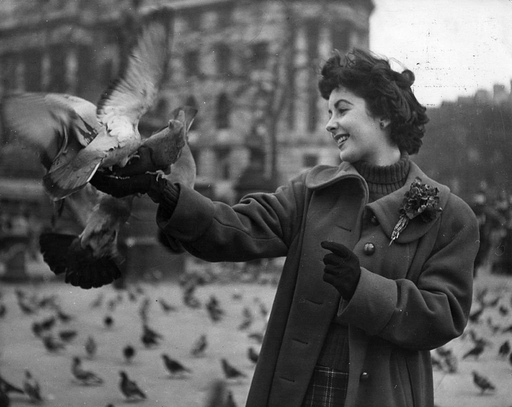 Image Credit: Getty Images / British born leading lady Elizabeth Taylor (1932 - ) feeds the pigeons in Trafalgar Square, London.