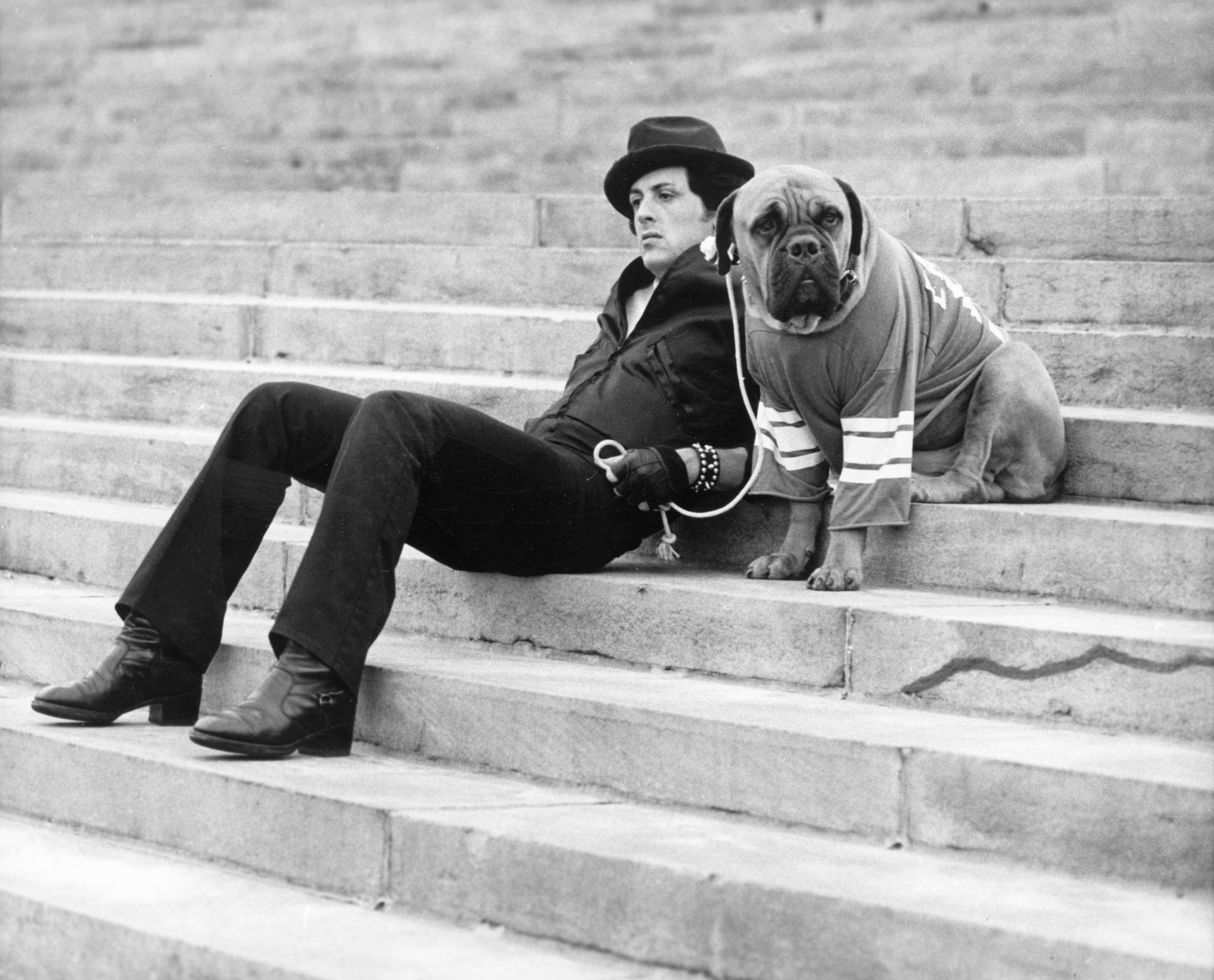 Image Credits: Getty Images / United Artists | American actor Sylvester Stallone sits on a staircase while holding the leash of a dog wearing a football jersey in a still from the film, 'Rocky,' directed by John G. Avildsen, 1976.