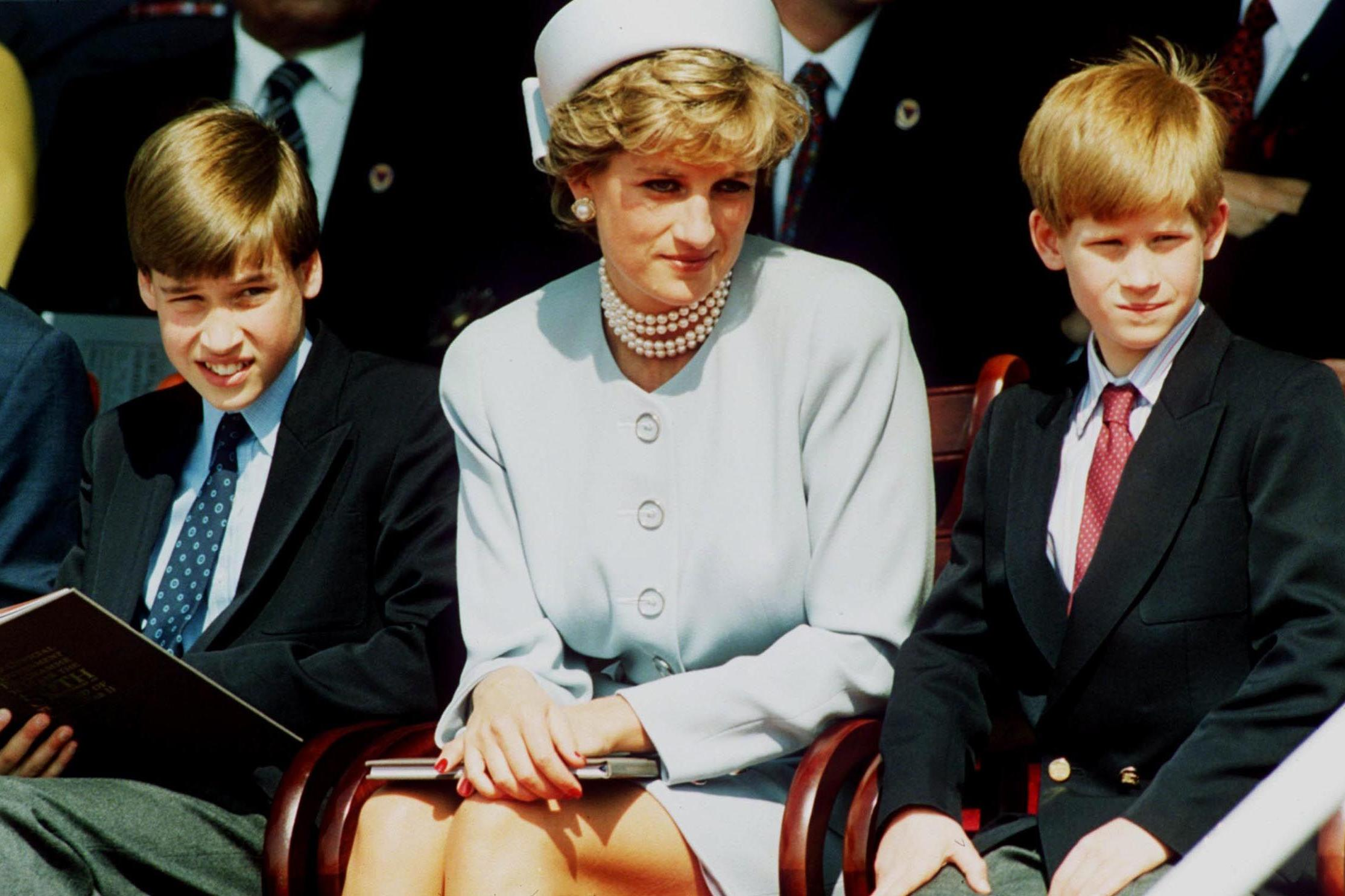 Prince William And Harry: How Diana's Loss Still Affects Their Lives