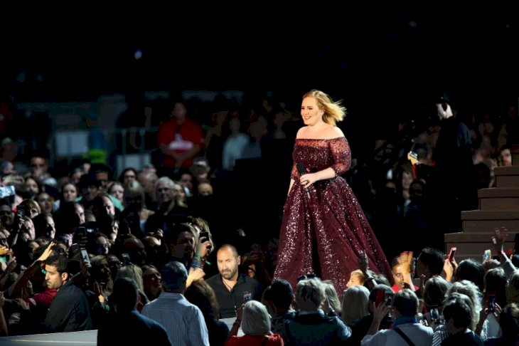 Image Credit: Getty Images / Adele at a show