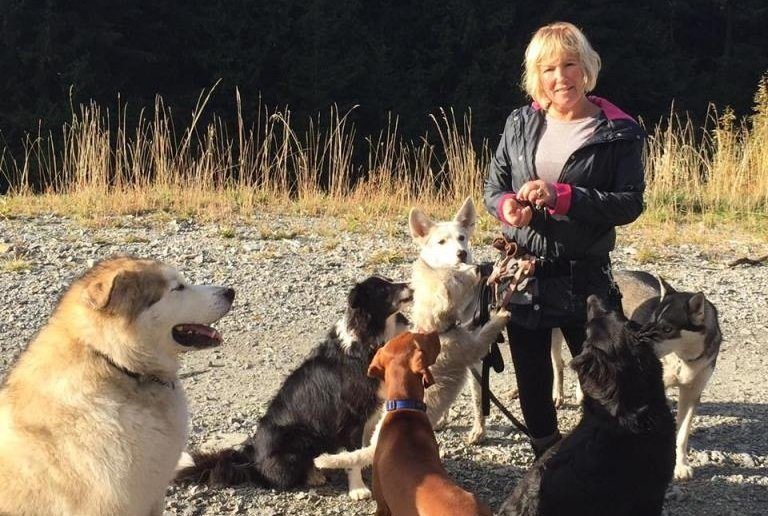 Dogs Help Injured Woman Survive In The Woods