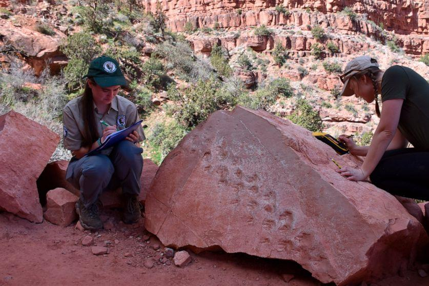Experts Made This Startling Discovery In The Grand Canyon