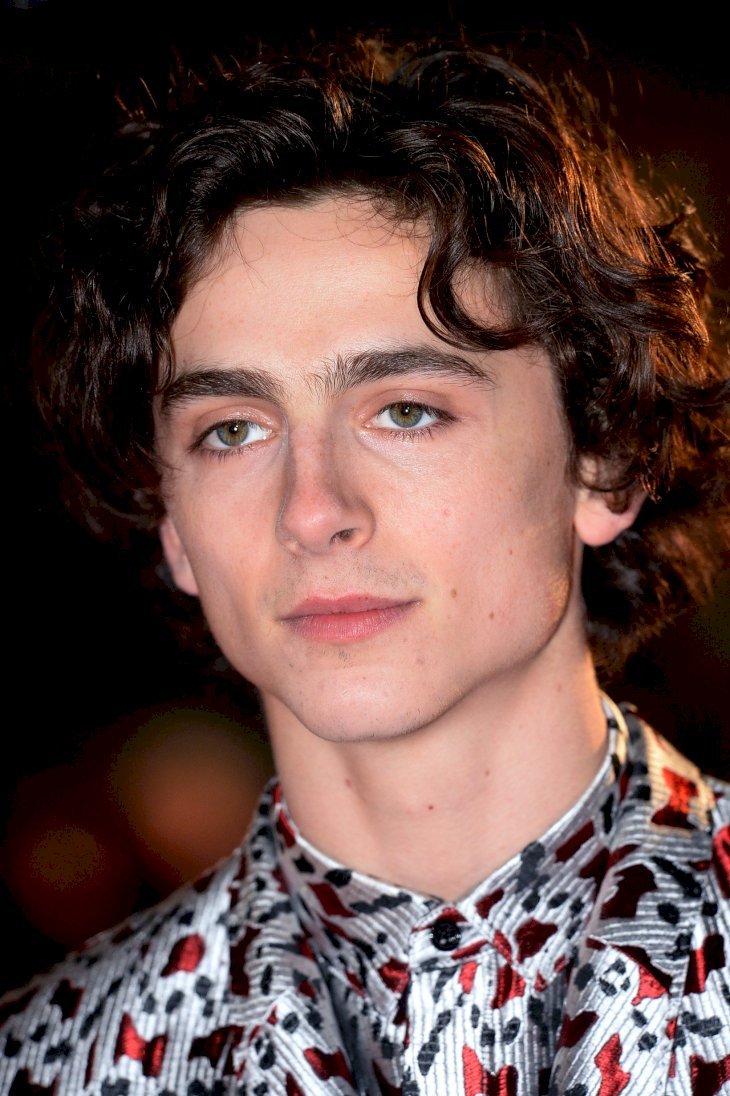 Image Credit: Getty Images / Timothee Chalamet on the red carpet.