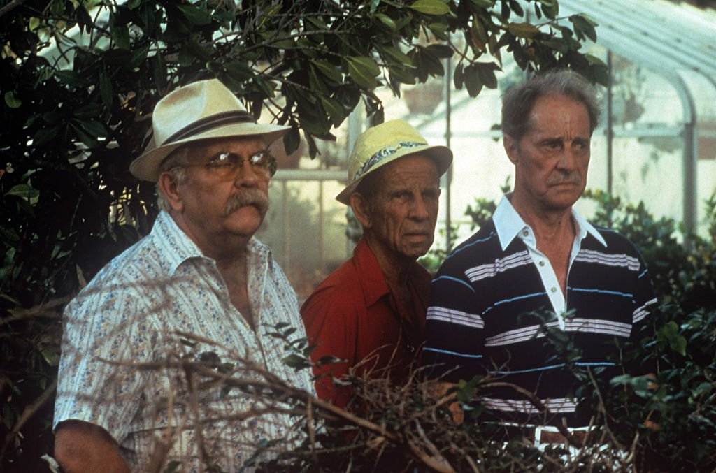 Image Source: Getty Images/Mondadori Portfolio| American actors Wilford Brimley, Hume Cronyn and Don Ameche acting in a greenhouse in the film Cocoon. 1985