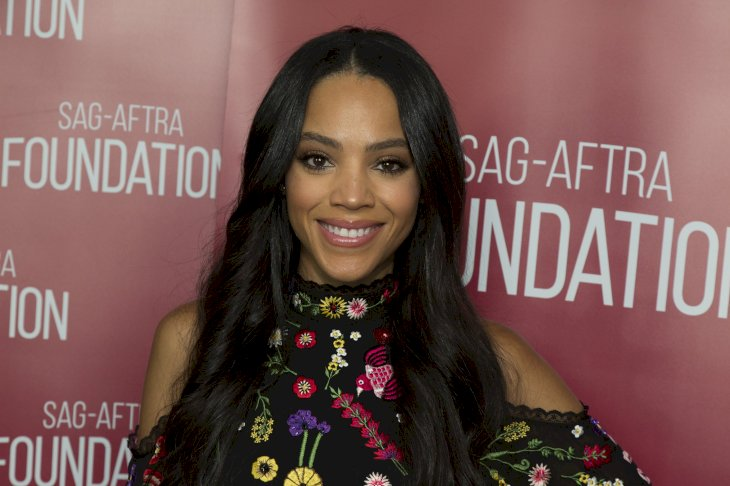 Image Credit: Getty Images / Bianca Lawson at an event.