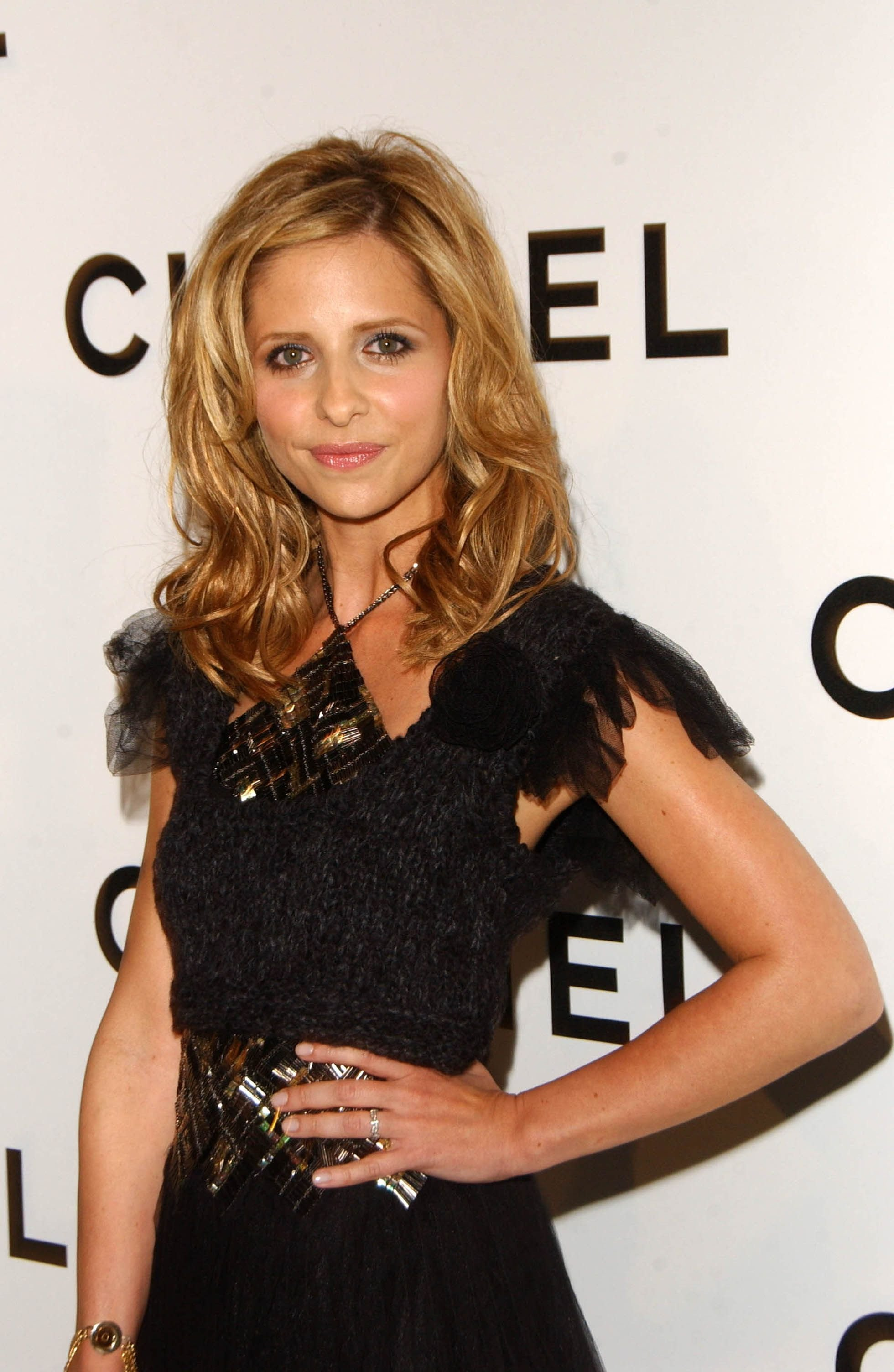 Sarah Michelle Gellar's career wasn't as successful as it used to be / Getty Images