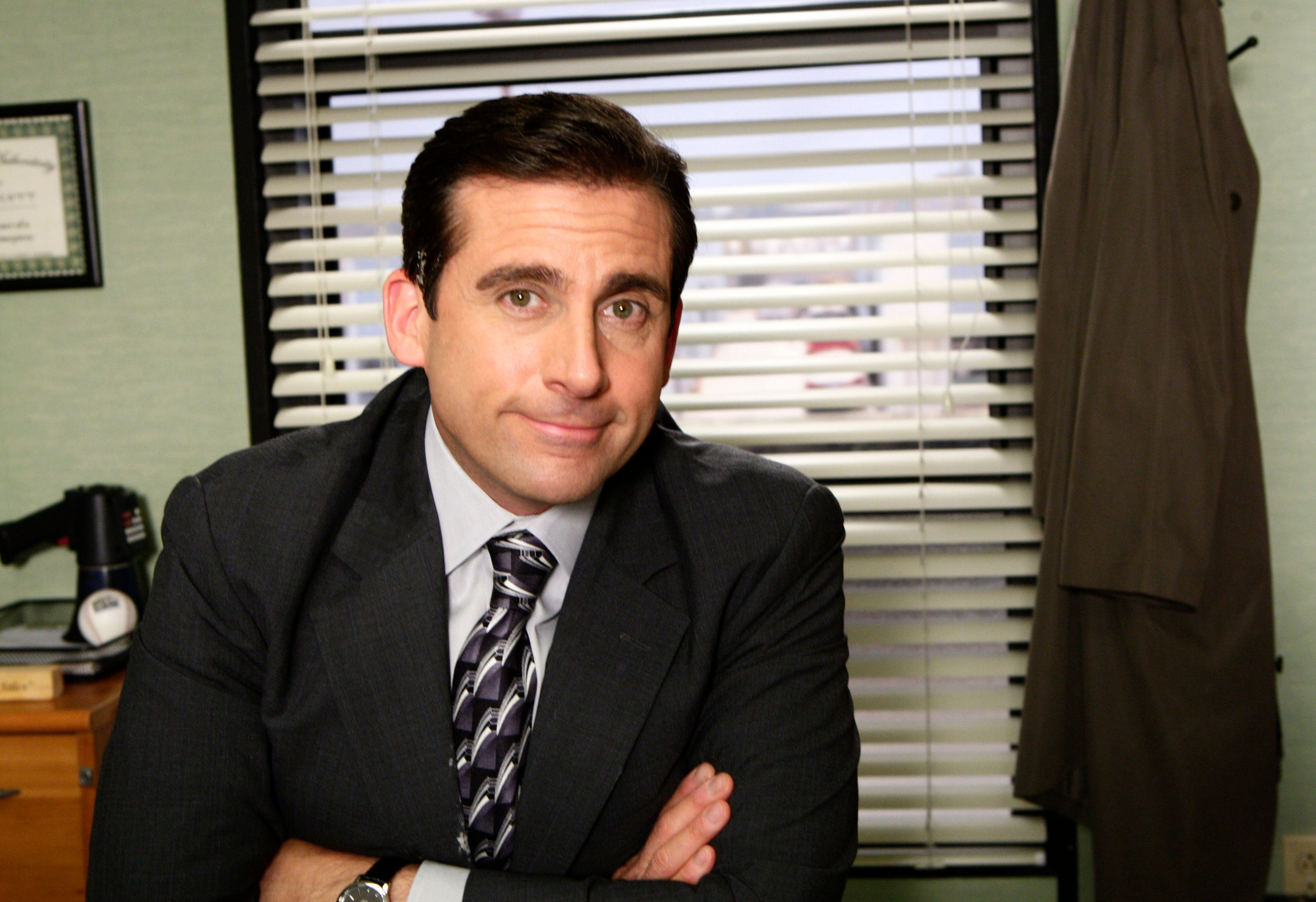 Steve Carell appeared in many other projects / Getty Images