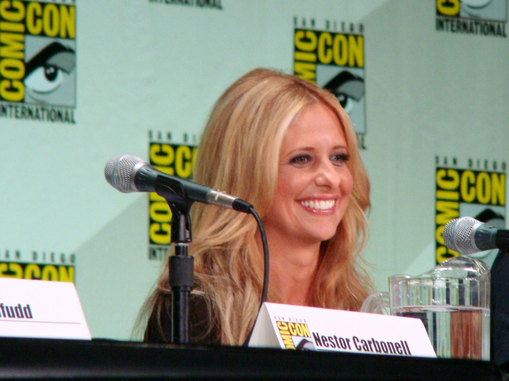 Sarah Michelle Gellar knows why Buffy was such a success / CC BY 2.0 / vagueonthehow / flickr