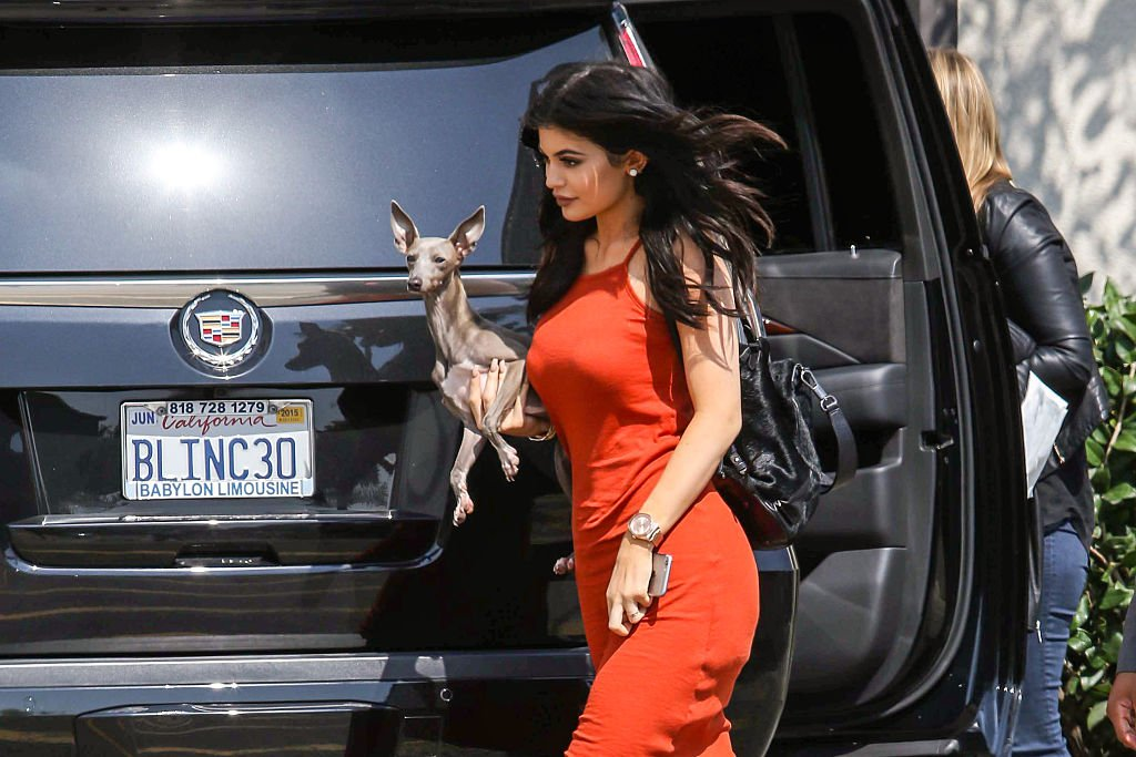 Image Credit: Getty Images / Kylie Jenner promotes TopShop at the Grove with her dog Norman on June 03, 2015 in Los Angeles, California