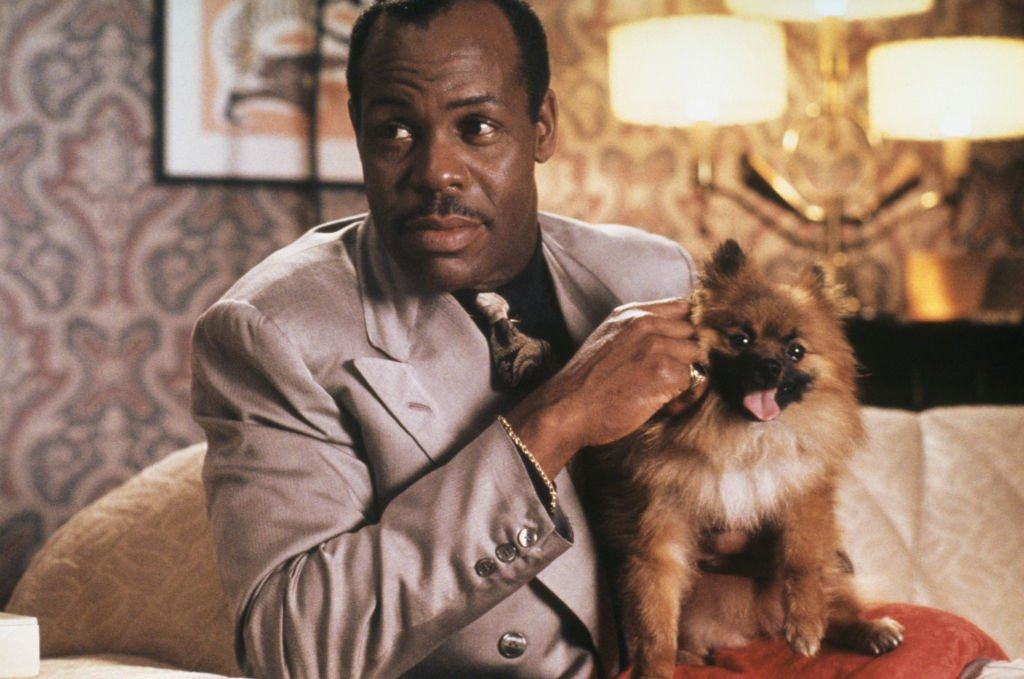 Image Source: Getty Images/Richard Blanshard| Easy Money (Danny Glover) with his pet dog in a scene from 'A Rage in Harlem', directed by Bill Duke, 1991