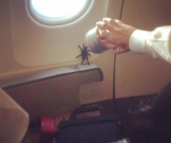 Crédito de imagen: Instagram/pasajeroshaming