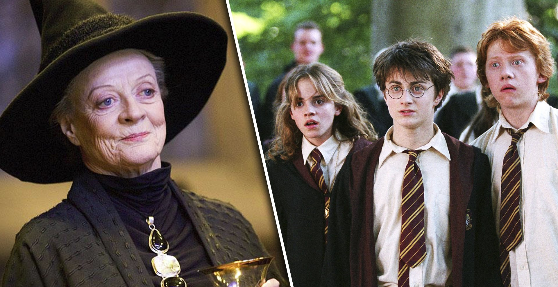 11 Strict Rules The Harry Potter Cast Had to Follow