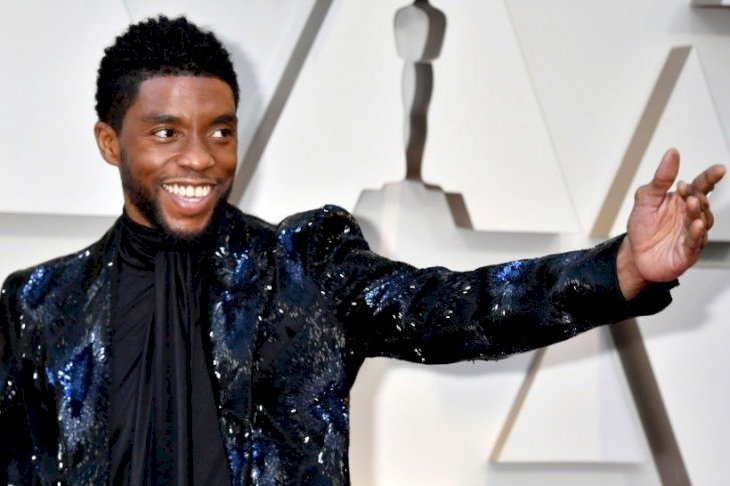 Image Credits: Getty Images / Chadwick Boseman at 91st Annual Academic Awards