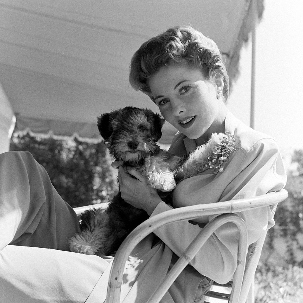 Image Source: Getty Images/The LIFE Picture Collection/Bob Landry/Fontaine with her pompadour hairdo, at home with her dog circa 1942.