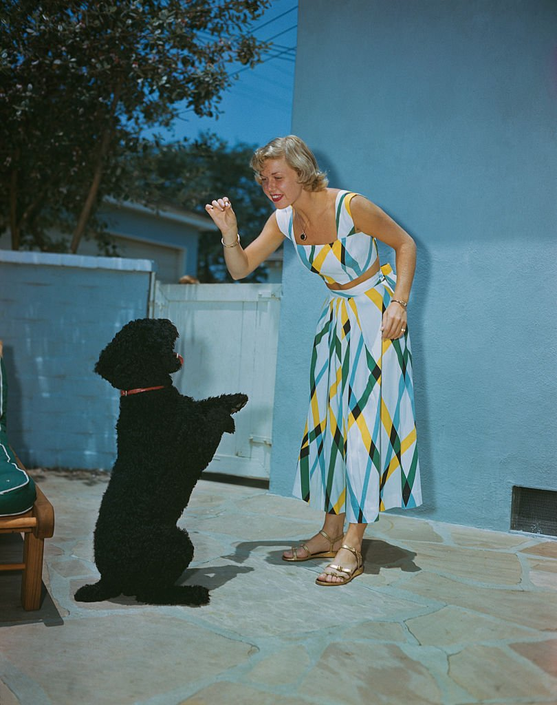 Image Credits: Getty Images / Archive Photos | American actress and singer Doris Day playing with a dog, circa 1950.