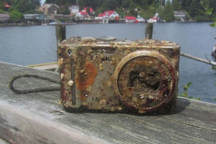 Photos Discovered From Camera Lost at Sea