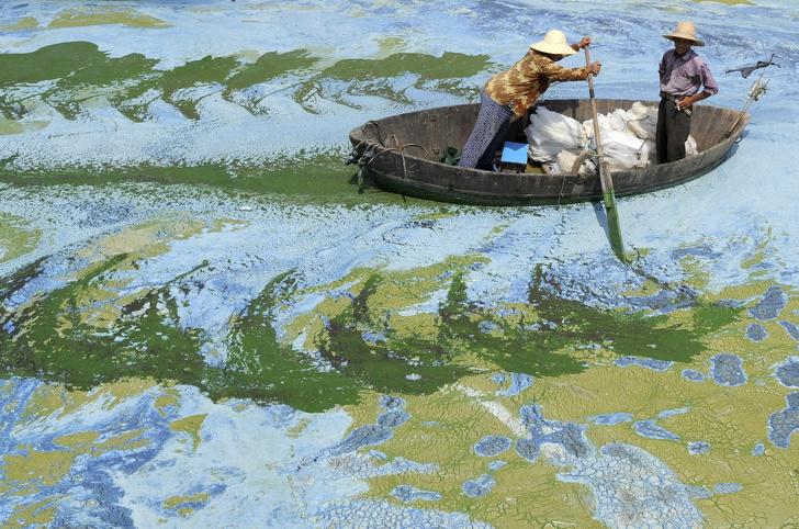 Image credits: Reuters/Jianan Yu