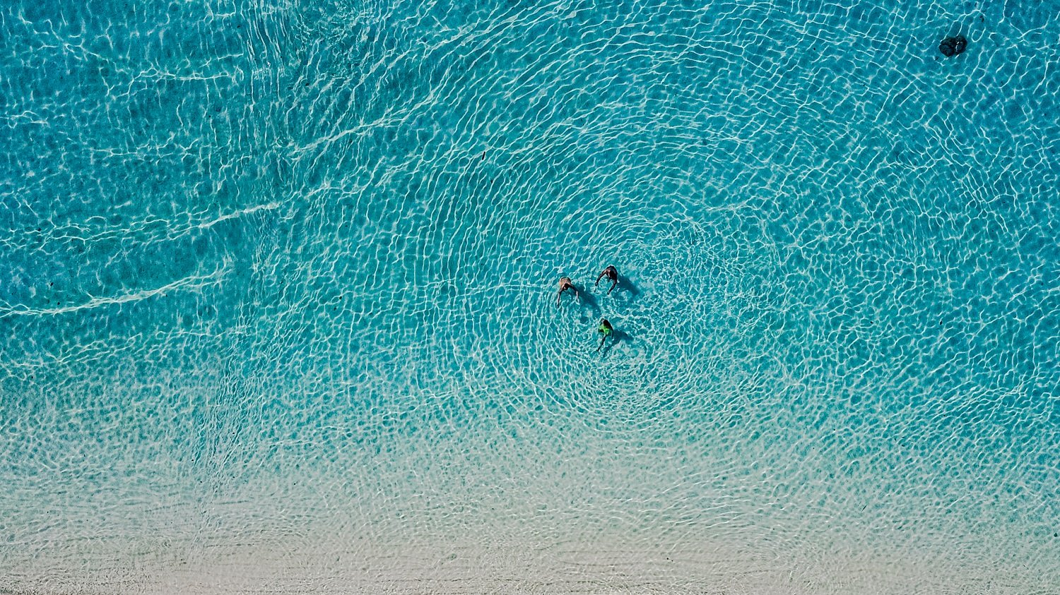 Amazing Photographs Taken by Drones