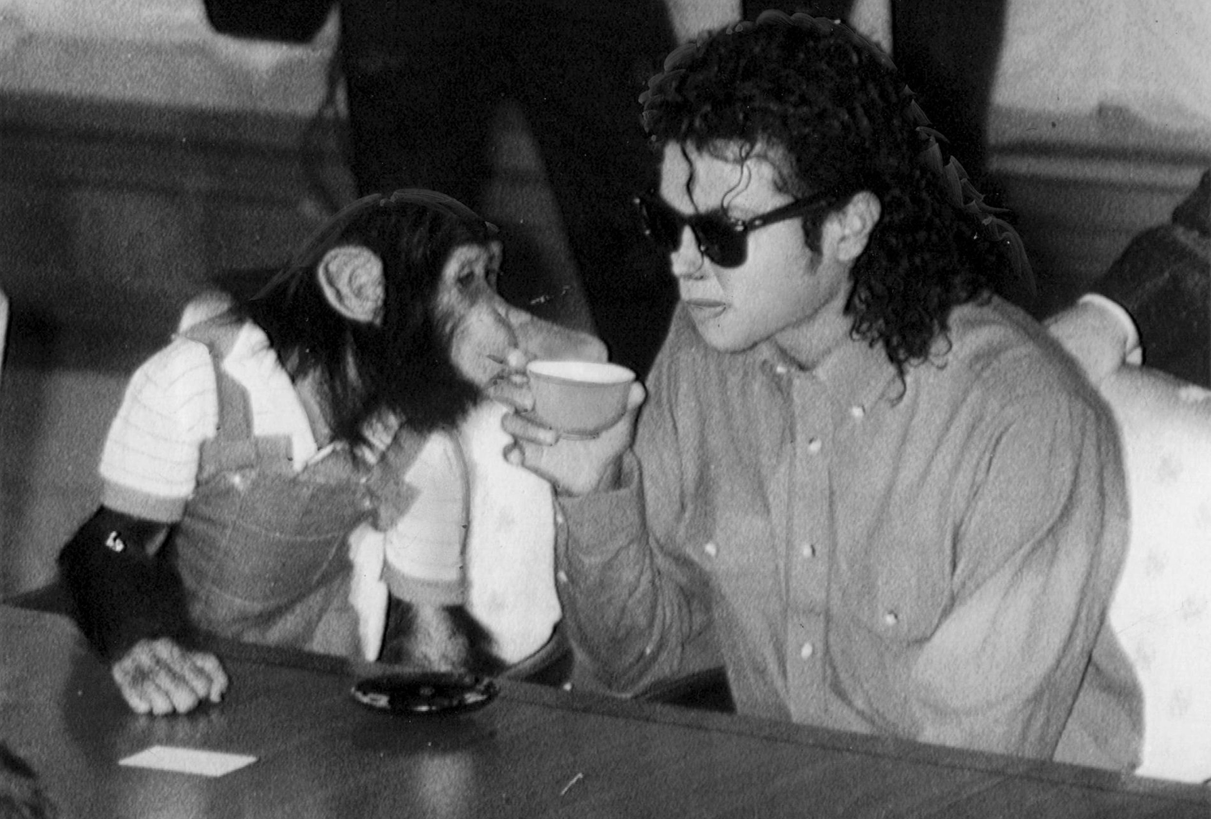 Image Credit: Getty Images / Michael Jackson and his pet chimpanzee, Bubbles.