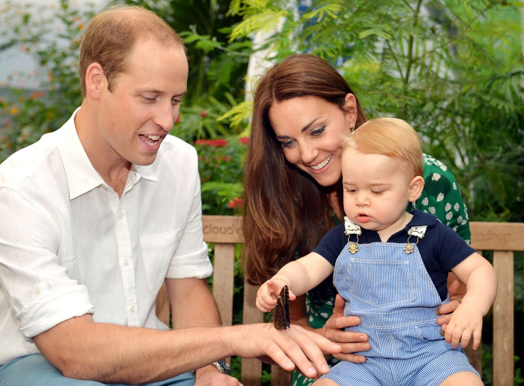 Image Credit: Getty Images / The Cambridges visit the Sensational Butterflies exhibition at the Natural History Museum on July 2, 2014 in London, England.