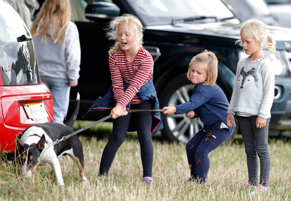 Image Credit: Getty Images / Savannah Phillips, Mia Tindall and Isla Phillips struggle to control their grandmother's bull terrier dog at Gatcombe Park on September 8, 2018 in Stroud, England.