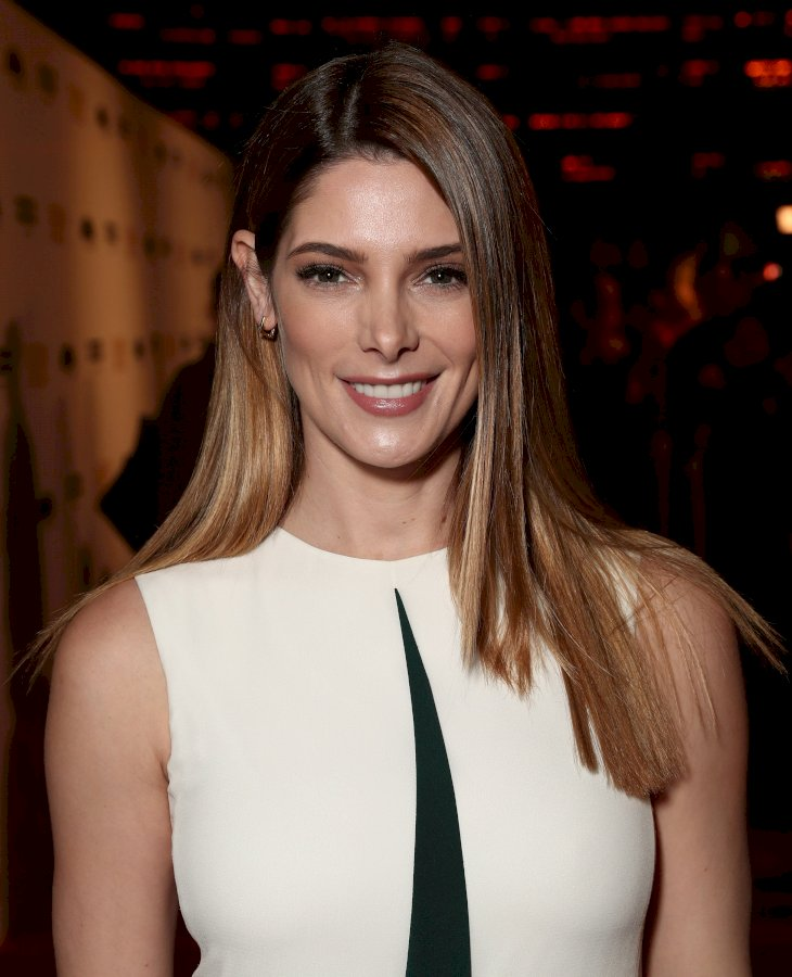 Image Credit: Getty Images / Ashley Greene on the red carpet.